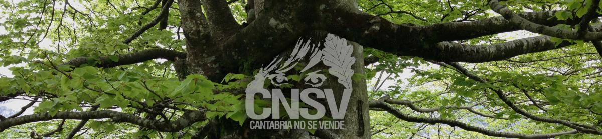 CANTABRIA NO SE VENDE